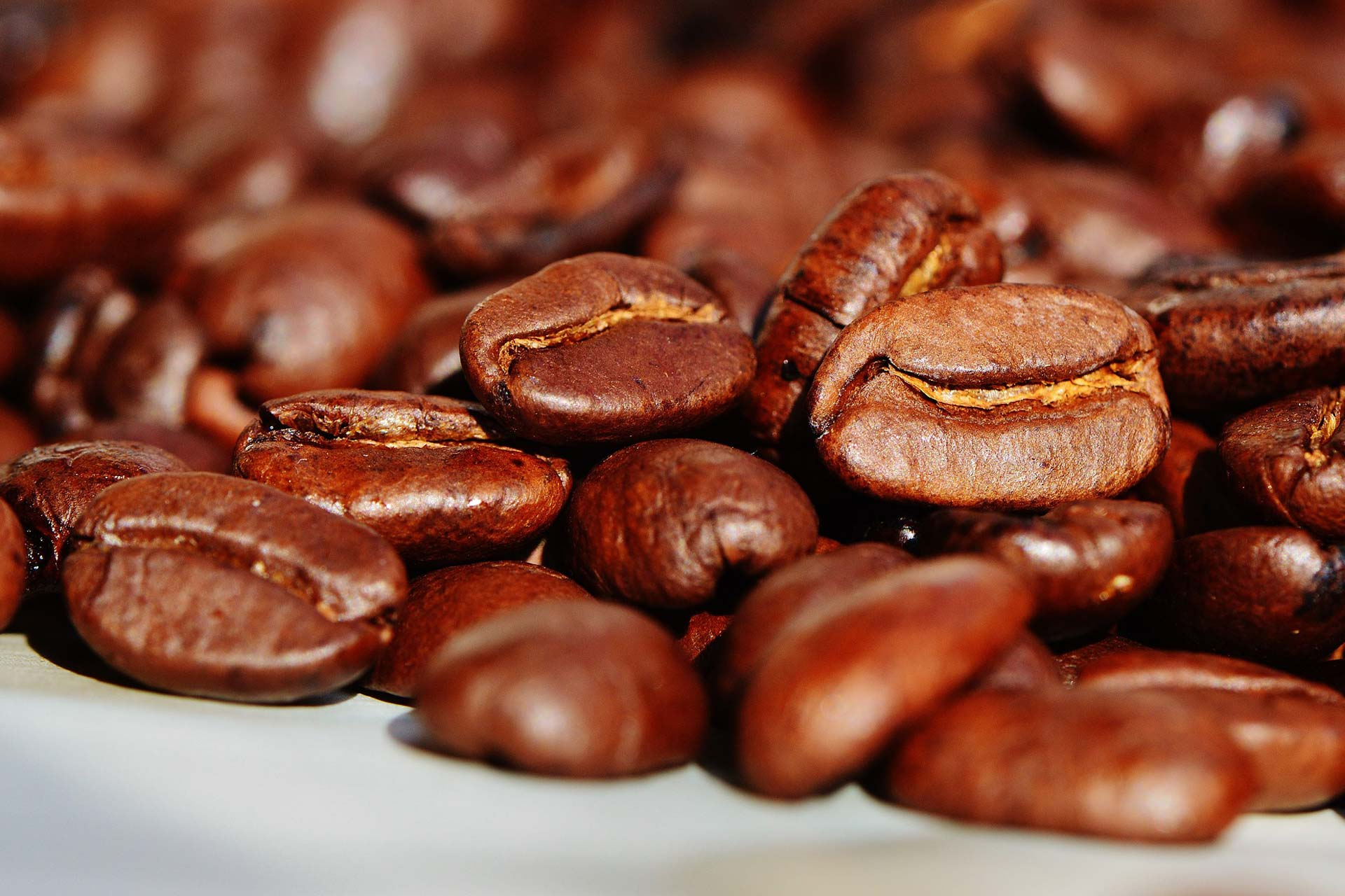 Kaffeelieferant